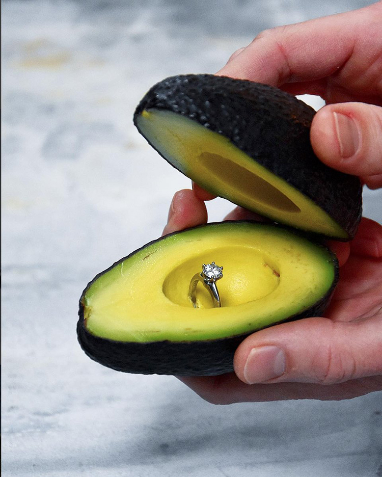 avocado_proposal